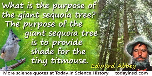 Edward Abbey quote: What is the purpose of the giant sequoia tree? The purpose of the giant sequoia tree is to provide shade for
