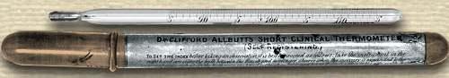 Allbutt short clinical thermometer alongside its tubular case