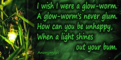 Anonymous quote: I wish I were a glow-worm.