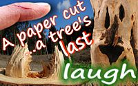 Anonymous quote A Paper Cut… A Tree's Last Laugh