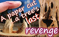 Anonymous quote A Paper Cut… A Tree's Last Revenge