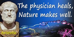 Aristotle quote: The physician heals, Nature makes well