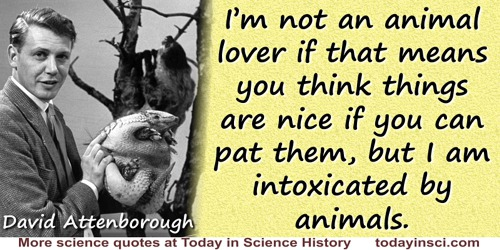 David Attenborough quote: I'm not an animal lover if that means you think things are nice if you can pat them, but I am intoxica