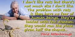 David Attenborough quote: I don't like rats but there's not much else I don't like. The problem with rats is they have no fear o