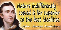 John James Audubon quote: Nature indifferently copied is far superior to the best idealities.