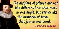 Francis Bacon quote: The divisions of science are not like different lines that meet in one angle, but rather like the branches