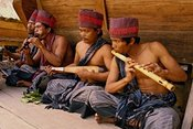 Indonesian musicians