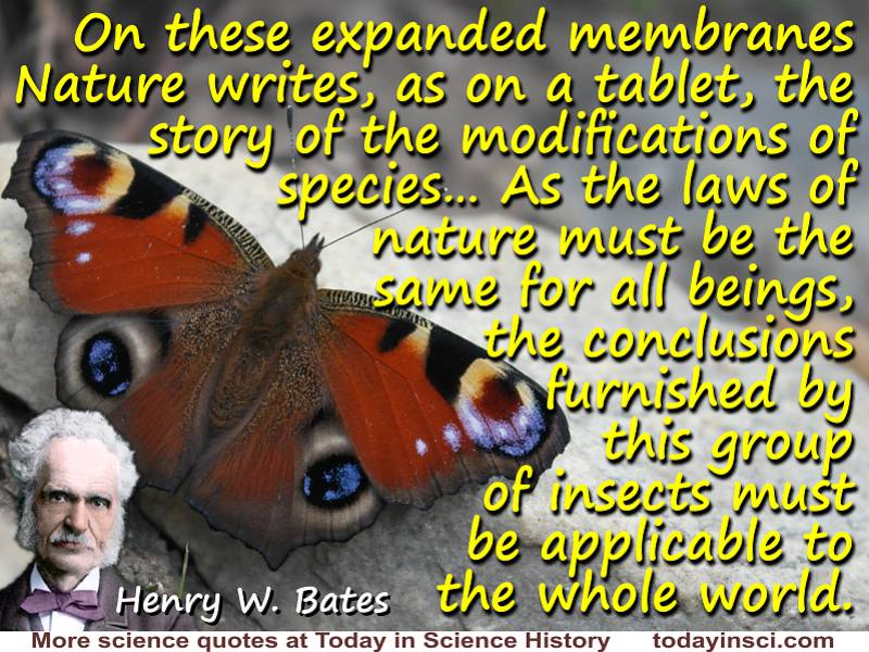 "H. W. Bates quote ""On these expanded membranes Nature writes, as on a tablet"""
