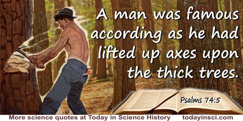 Bible quote: A man was famous according as he had lifted up axes upon the thick trees.