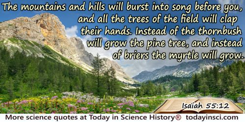Bible quote: The mountains and hills will burst into song before you, and all the trees of the field will clap their hands.