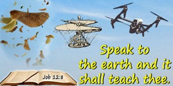 Bible quote: Speak to the earth and it shall teach thee.