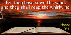 Bible quote: For they have sown the wind, and they shall reap the whirlwind.