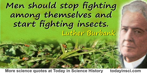 Luther Burbank quote: Men should stop fighting among themselves and start fighting insects.