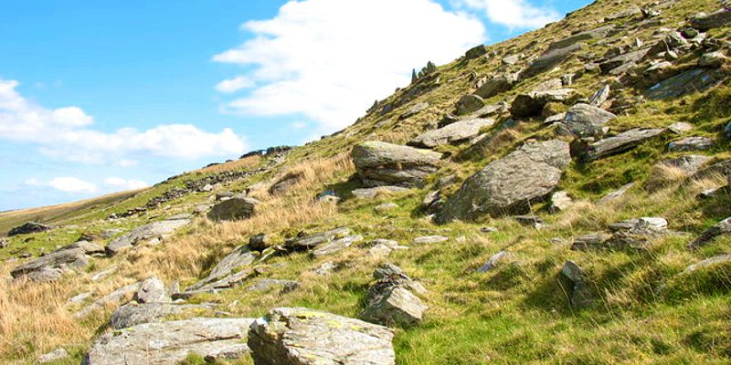 Photo of a grassy hill slope strewn with numerous boulders and stone of various sizes