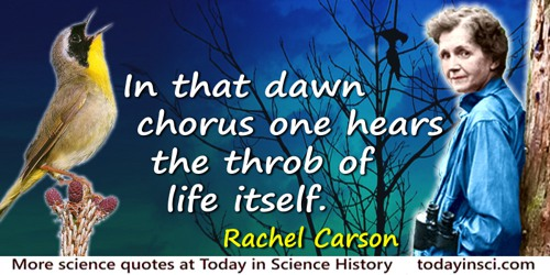 Rachel Carson quote: In that dawn chorus [of birds] one hears the throb of life itself.