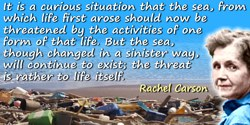 Rachel Carson quote: It is a curious situation that the sea, from which life first arose should now be threatened by the activit
