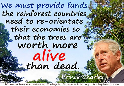 "Deforestation Quote Prince Charles ""Rainforest countries need economies…trees are worth more alive than dead"" Rainforest photo"