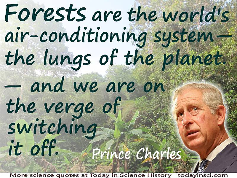 "Deforestation quote Prince Charles ""Forests are the world's air conditioning…on the verge of switching it off"" Rainforest photo"