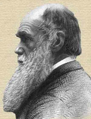 Charles Darwin - face, side profile