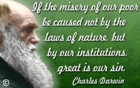 Charles Darwin quote If the misery of our poor be caused not by the laws of nature…