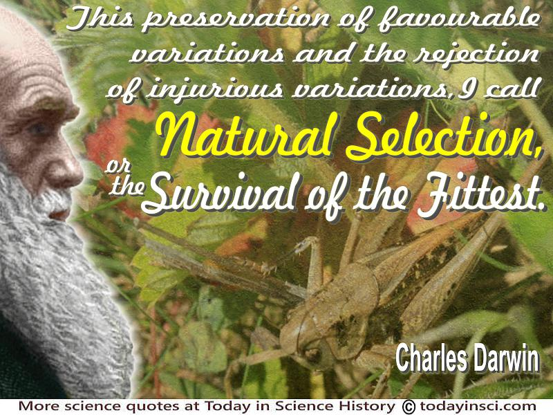 natural selection to survival of the fittest 06052018  the term survival of the fittest was first used by the victorian naturalist herbert spencer as a metaphor to help explain natural selection, the central.
