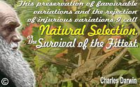 Charles Darwin quote This�I call Natural Selection, or Survival of the Fittest