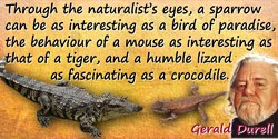 Gerald Malcolm Durrell quote: Through the naturalists eyes, a  sparrow can be as interesting as a bird of paradise, the behaviou