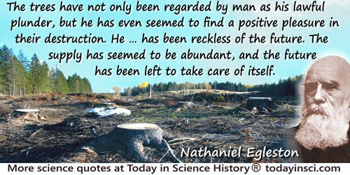 Nathaniel H. Egleston quote: The trees have not only been regarded by man as his lawful plunder, but he has even seemed to find