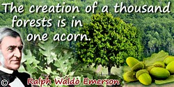 Ralph Waldo Emerson quote: The creation of a thousand forests is in one acorn.