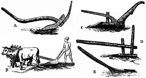 Drawings of an East Indian plow, an Egyptian plow, a Mexican plow, a Chinese plow, an ancient British implement