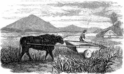 Drawing of Fowler's steam-plow plowing across the field from side to side using ropes powered by a steam engine at one side