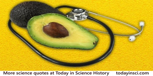 Avocado, sliced in halves, resting on a stethoscope