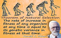 Ronald Aylmer Fisher quote �Fundamental Theorem of Natural Selection�
