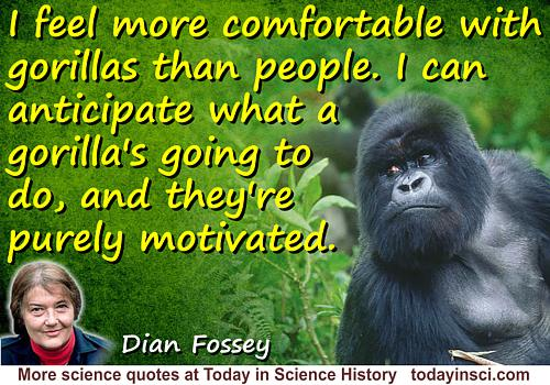 Dian Fossey quote I feel more comfortable with gorillas