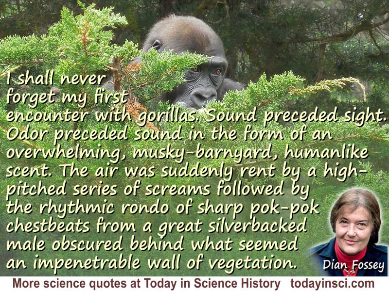 Dian Fossey quote My first encounter with gorillas