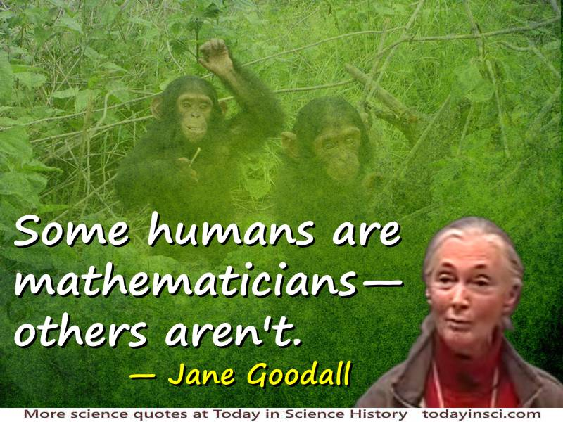 Jane Goodall quote Some humans are mathematicians