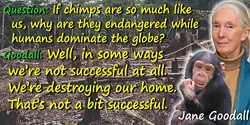 Jane Goodall quote: Question: If chimps are so much like us, why are they endangered while humans dominate the globe? Goodall: