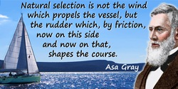 Asa Gray quote: Natural selection is not the wind which propels the vessel, but the rudder which, by friction, now on this side