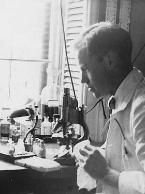Photo of Alan Gregg in white lab coat, seated looking left, at lab bench covered with glassware, using microscope