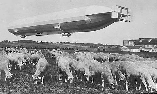 Photo of a Zeppelin floating low over a field. Grazing sheep fill the foreground. Row of spectators in midground. Hangar far R.