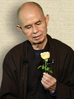 Photo of Thich Nhat Hanh, face forward, looking down at a rose-like flower, with cut stem held in L hand
