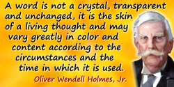 Oliver Wendell Holmes quote: A word is not a crystal, transparent and unchanged, it is the skin of a living thought and may vary
