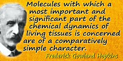Frederick Gowland Hopkins quote: The molecules with which a most important and significant part of the chemical dynamics
