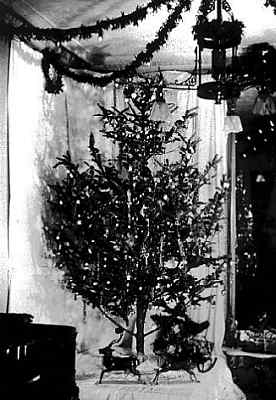 Photo of Edward H. Johnson's Christmas tree