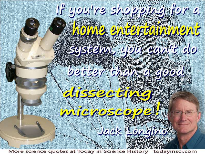"Jack Longino quote ""Home entertainment … a good dissecting microscope"" on background microphotograph of fly wings + Longino face"