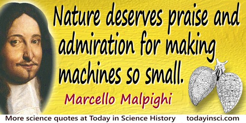 Marcello Malpighi quote Nature deserves praise…for making machines so small