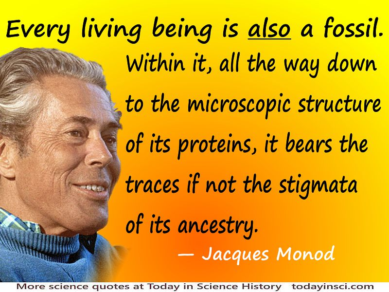 "Jacques Monod quote ""Every living being is <i>also</i> a fossil."""