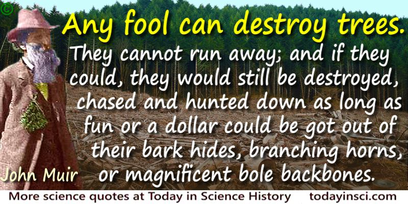 John Muir quote Any fool can destroy trees