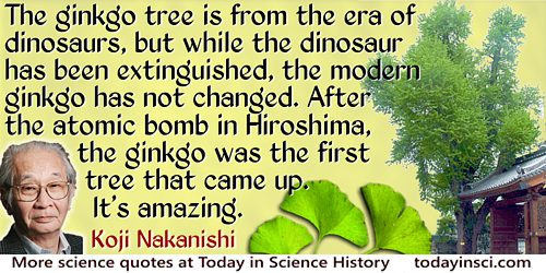 Koji Nakanishi quote: The ginkgo tree is from the era of dinosaurs, but while the dinosaur has been extinguished…