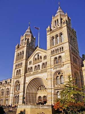 Photo of Entrance to Natural History Museum showing steps up to large arch over entrance doors, towers rising two stories higher
